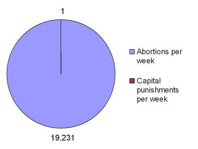 pie_chart-abortion_and_capital_punishment.jpg
