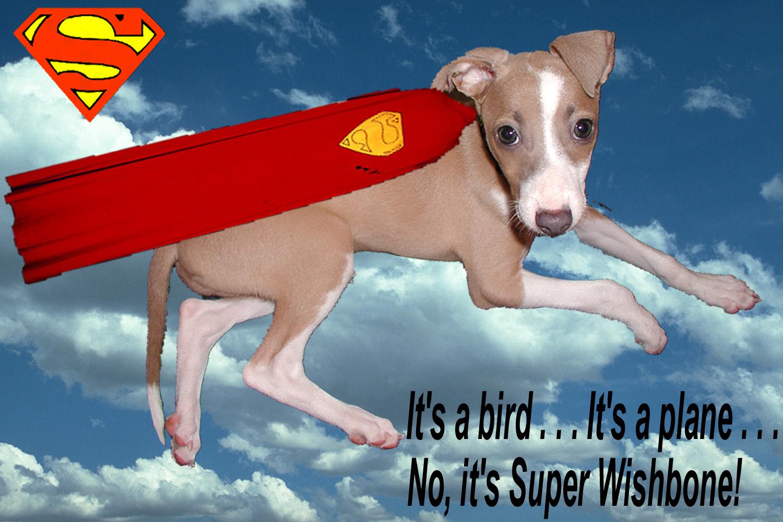 SuperWishbone